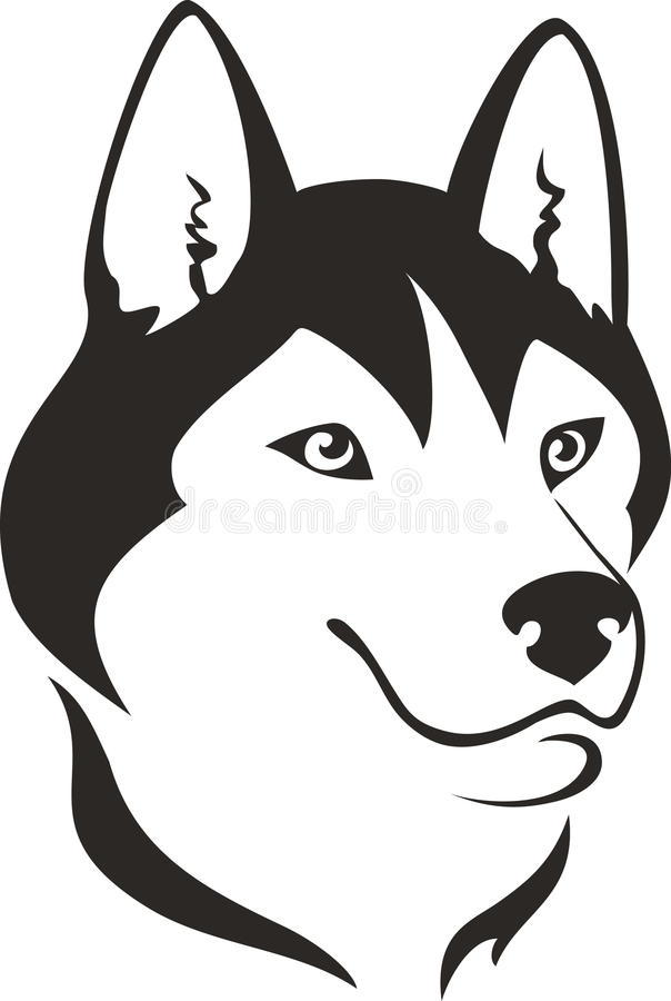 Download Husky dog stock vector. Image of isolated, head, nature - 29687199