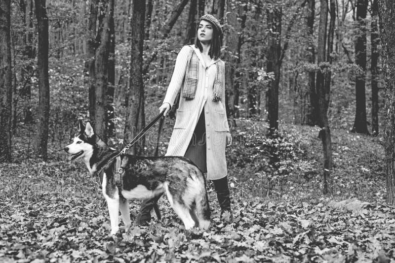 Husky dog - best friends. Girl enjoy walk with husky dog. Siberian husky favorite pet. Animal husbandry. Girl pretty. Stylish woman walking with husky dog stock photography