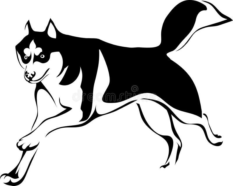 Husky dog running. Vector illustration running dog Huskies vector illustration