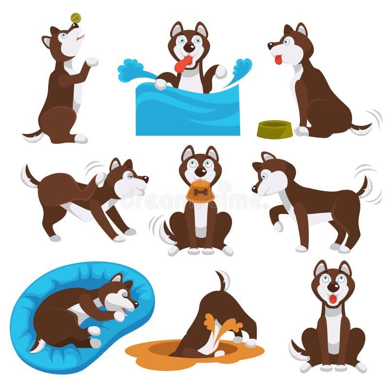 Husky kreskówki psi zwierzę domowe bawić się lub trenuje ilustracji