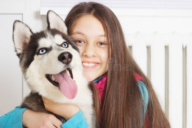 husky siberian för flicka royaltyfria foton