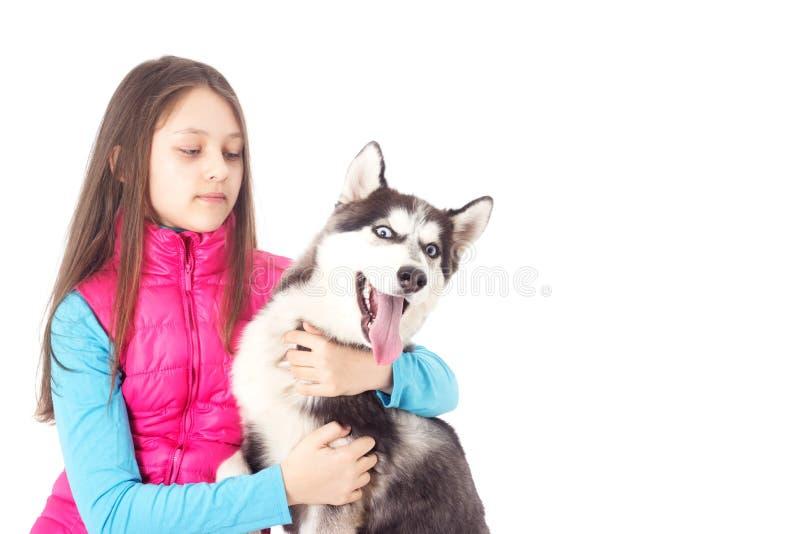 husky siberian för flicka royaltyfri bild