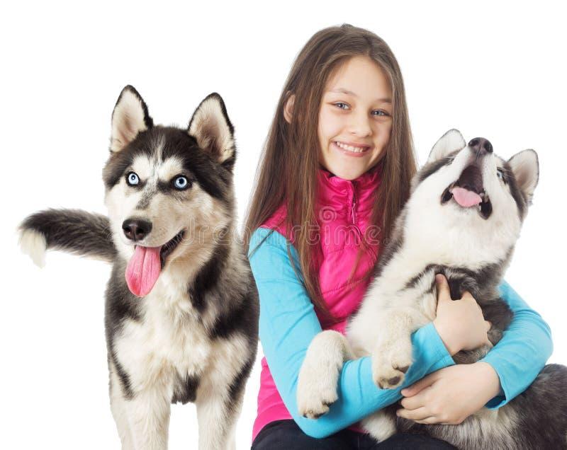 husky siberian för flicka royaltyfri foto