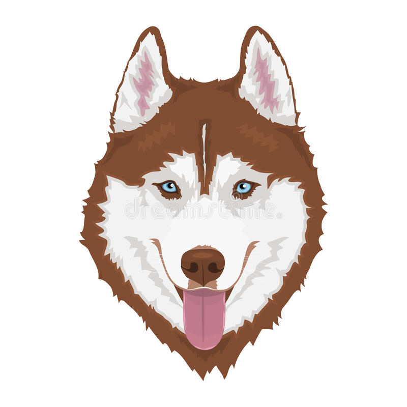 husky siberian för hund royaltyfri illustrationer