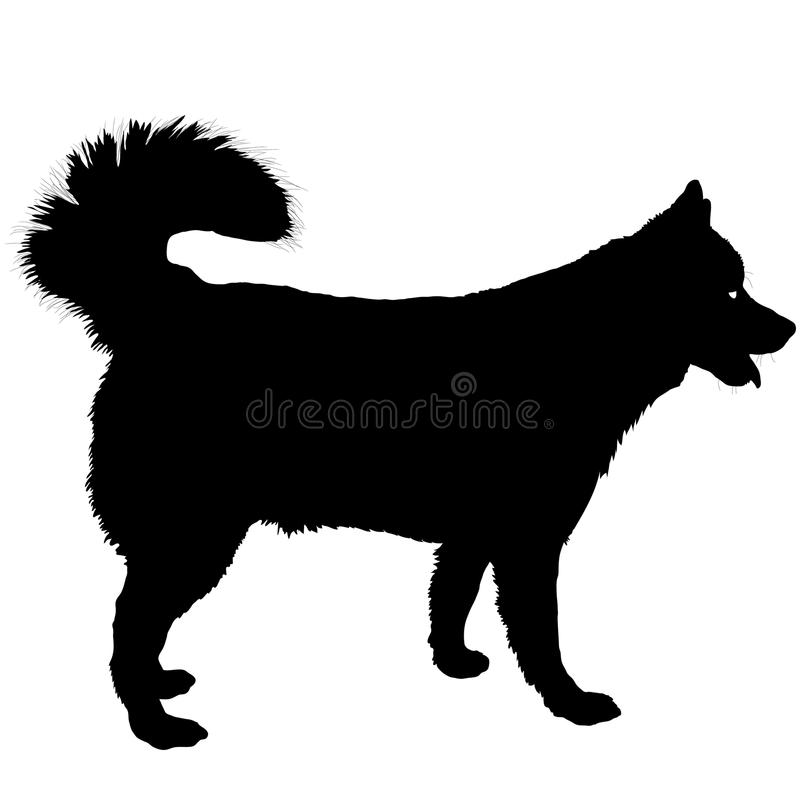 Husky Silhouette stock illustration