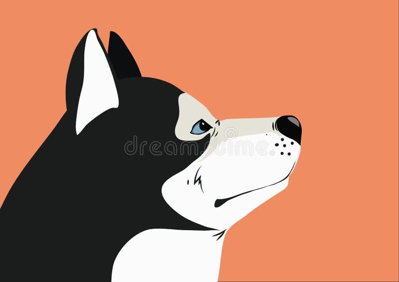 Husky - vago fotografia stock