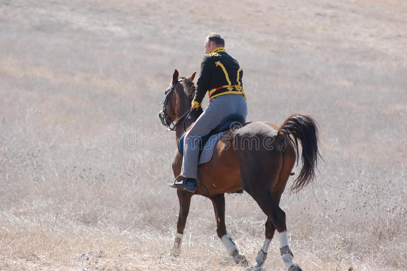 hussar стоковое фото rf