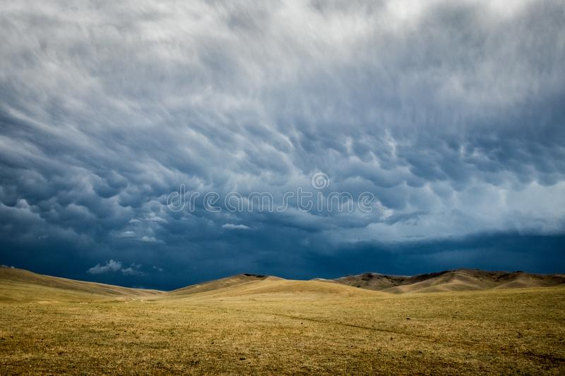 A mongolian landscape with a big storm in backgound. In the Hustai National Park of Mongolia: landscape with a big storm in backgound royalty free stock images