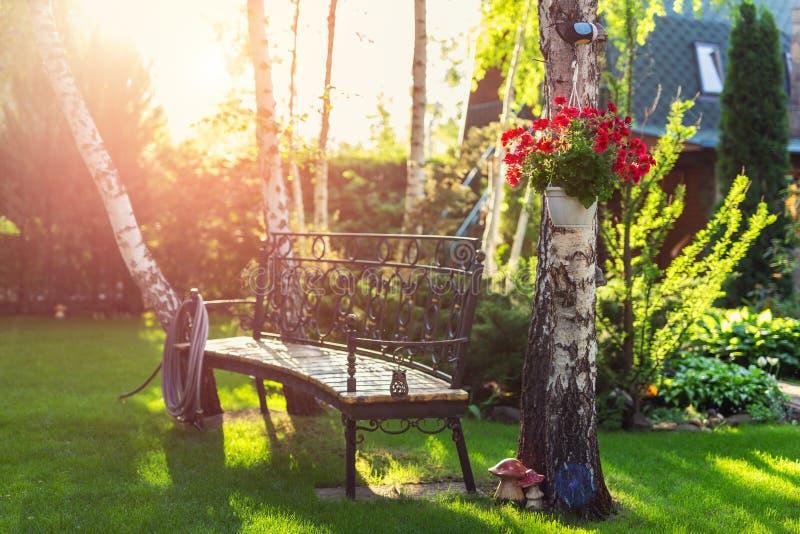 Husträdgårdträdgård med bänken som hänger blomstra blommor bevattna slanganfträd Varm tid för sommar- eller höstaftonsolnedgång royaltyfria foton