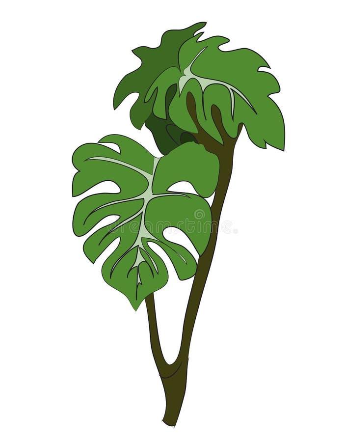 Husväxt på en filial, vektor royaltyfri illustrationer