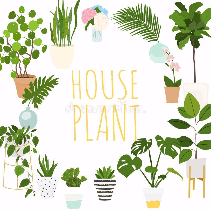 Husväxter Blomkruka isolerade objekt, houseplantblomkruka stock illustrationer