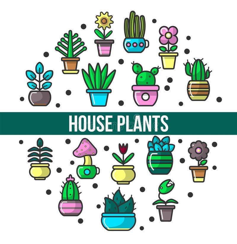 Husväxter och inomhus grönska för blommor i krukaaffisch royaltyfri illustrationer