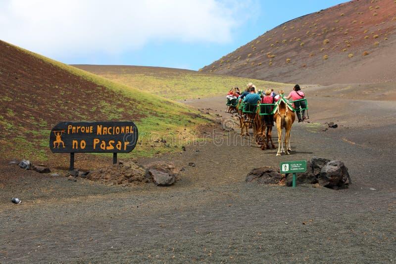 Husvagn av kamel med turister i den Timanfaya nationalparken, Lanzarote, kanariefågelöar arkivfoton