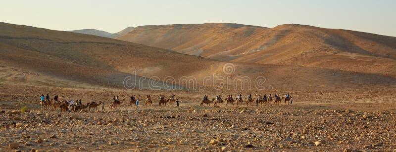 Husvagn i öknen, Israel royaltyfria bilder