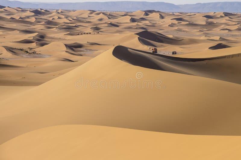 Husvagn i Sahara Desert royaltyfria foton