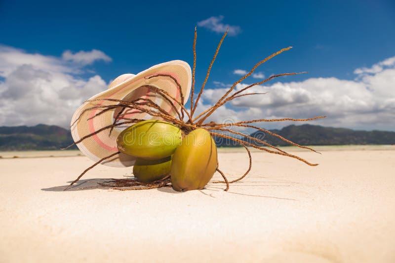 Hut über einem Bündel Coconüssen auf dem Strand lizenzfreie stockbilder