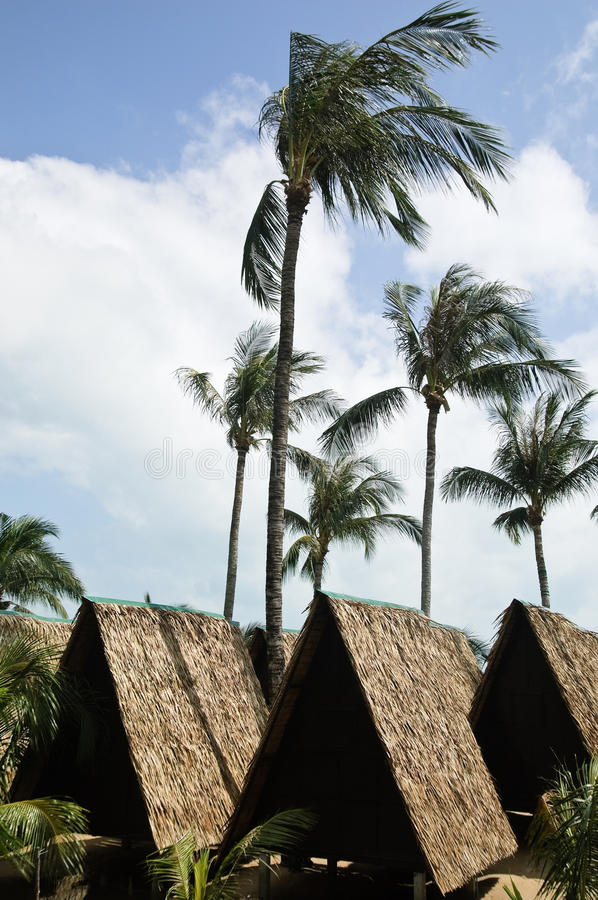Download Hut On The Beach Royalty Free Stock Photo - Image: 11745995