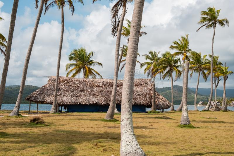 Hut, bungalow under palm trees on island near beach.  stock images