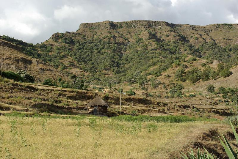 Download Hut in Ethiopia stock photo. Image of africa, roof, village - 24974458