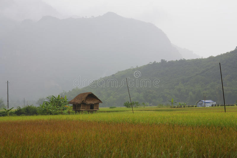 Download Hut In Field Stock Photos - Image: 20919933