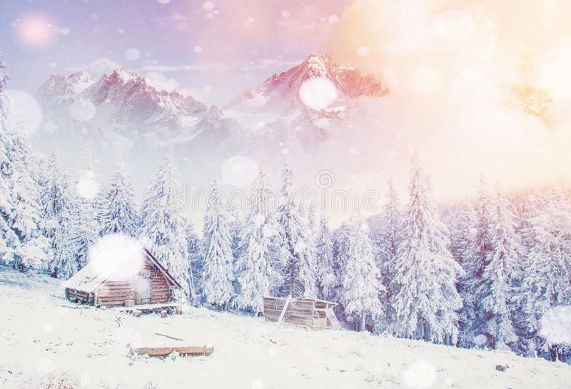 Hut in the mountains in winter, background with some soft highlights and snow flakes. Carpathians, Ukraine. Hut in the mountains in winter, background with some stock image