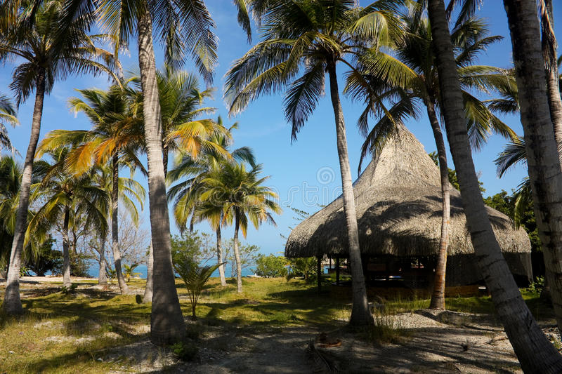 Hut and palms. The Rosario Islands. royalty free stock photography