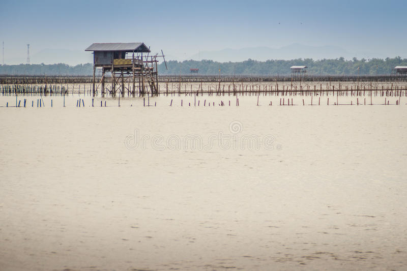 Hut in the sea that used for the owner to stay and guard his cockle farm in Samut Songkram, Thailand royalty free stock images