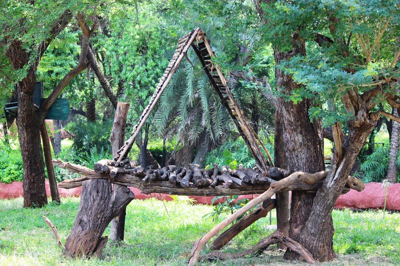 Hut on tree. Hut made of wood and bamboo on atree stock photography