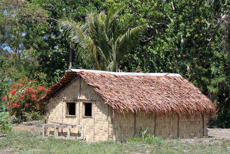 Hut and trees. In Efate island, Vanuatu royalty free stock photo