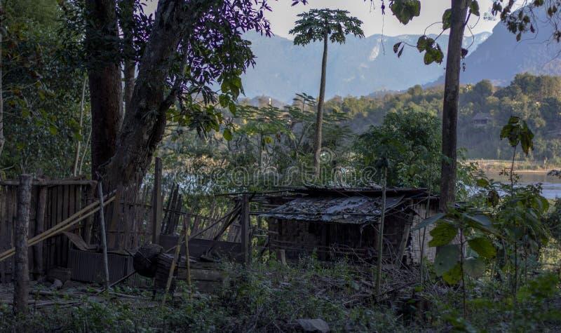Hut in wildernis, Laos royalty-vrije stock fotografie