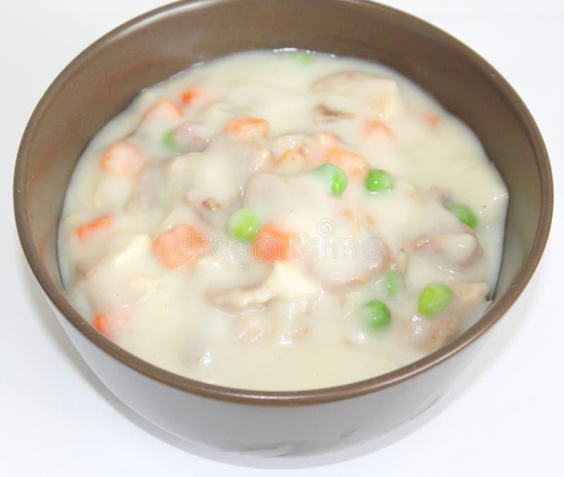 Hutspot met kip en groenten royalty-vrije stock foto