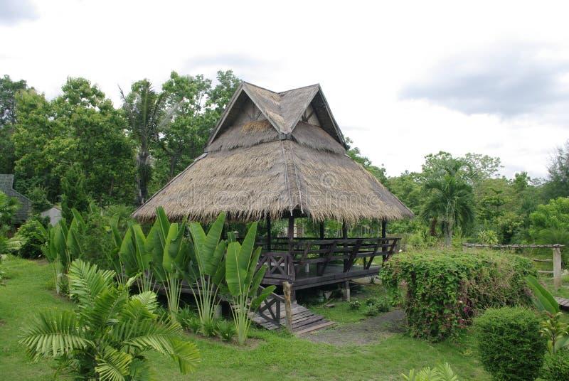 Hutte africaine, hutte tropicale dans la nature photo stock