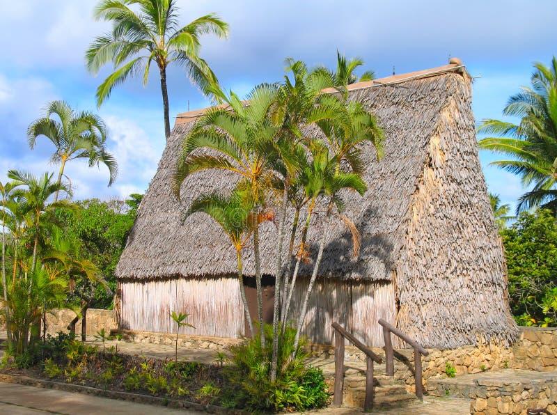 Hutte d'île de South Pacific image stock