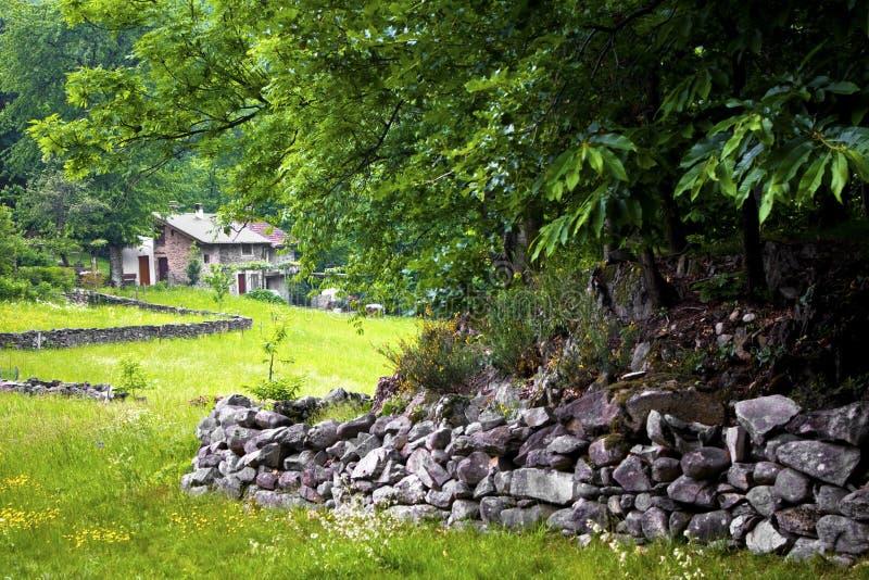 Hutte d'herbe avec photo libre de droits