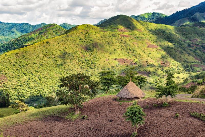 Hutte dans la réservation de forêt de Bonga en Ethiopie du sud image libre de droits