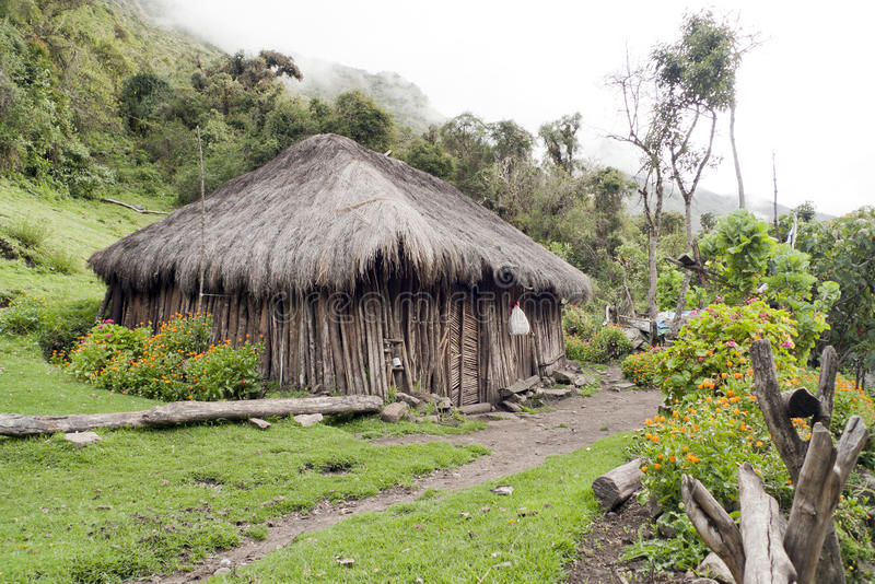 Hutte de jungle photo stock