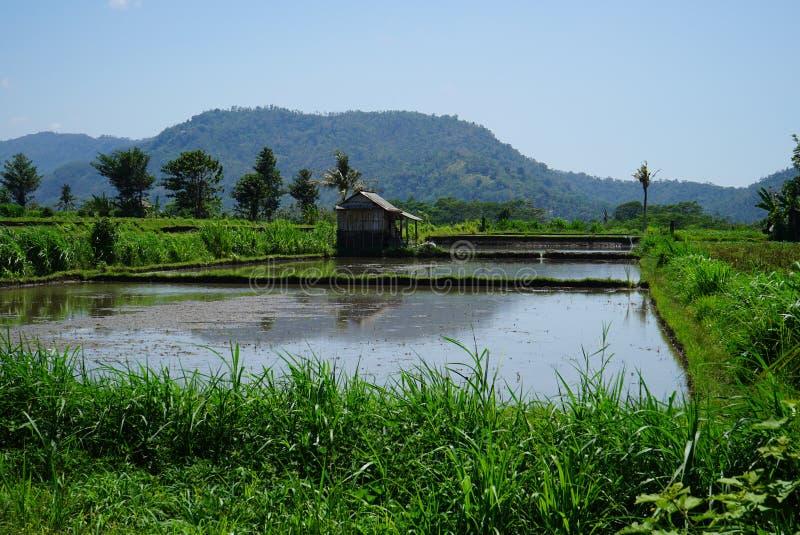 Hutte de pêche par l'étang près de la montagne image libre de droits