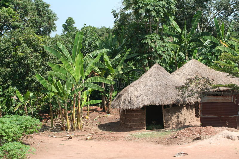 Hutte tatched africaine, Ouganda images stock