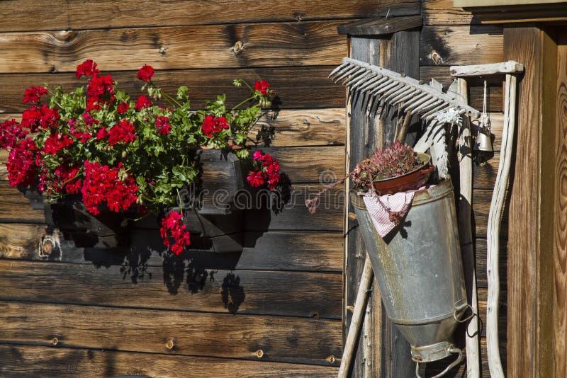 Hutte toujours alpine de la vie photographie stock libre de droits