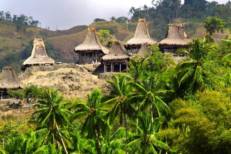 Hutte traditionnelle d'habitant en île de sumba images stock