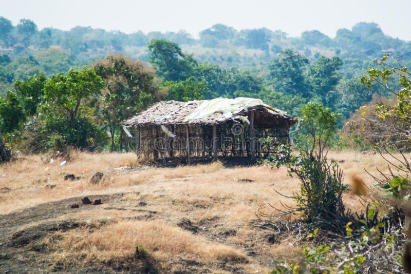 Hutte traditionnelle de village dans une forêt photos libres de droits