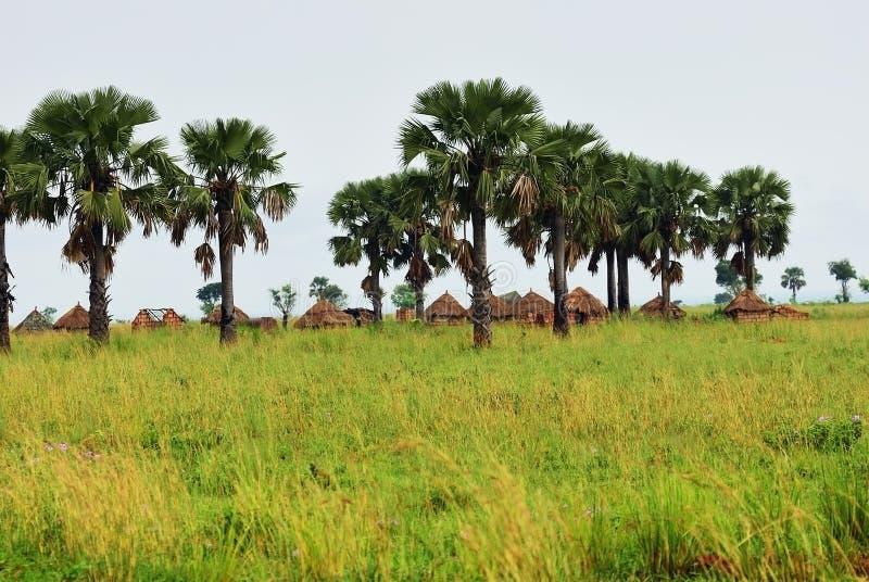 Hutten in het Dorp in Oeganda, Afrika stock fotografie