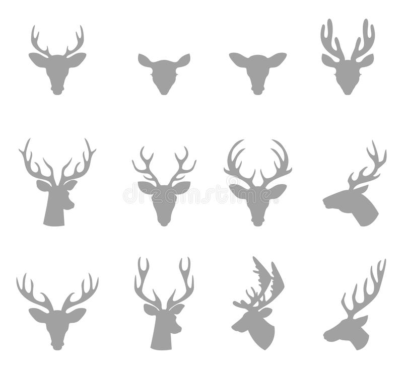 Huvud av en hjort med horn stock illustrationer