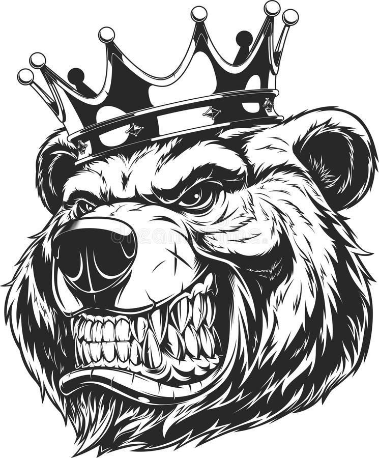 Huvud av en vild björn vektor illustrationer