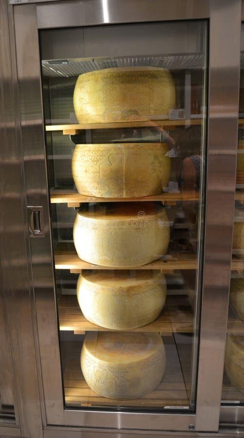 Huvud för hel ost arkivfoton