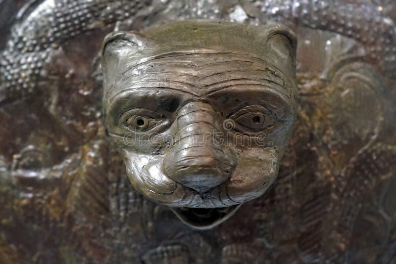 Huvud för Lion` s arkivfoton