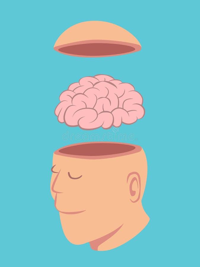 Huvud och hjärna av människan royaltyfri illustrationer