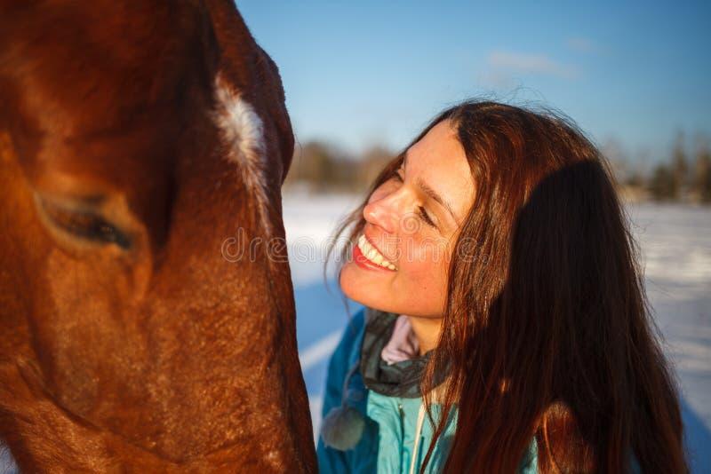 Huvudet av en häst och en flickas händer stänger sig upp Hon matar den röda hästen royaltyfria bilder