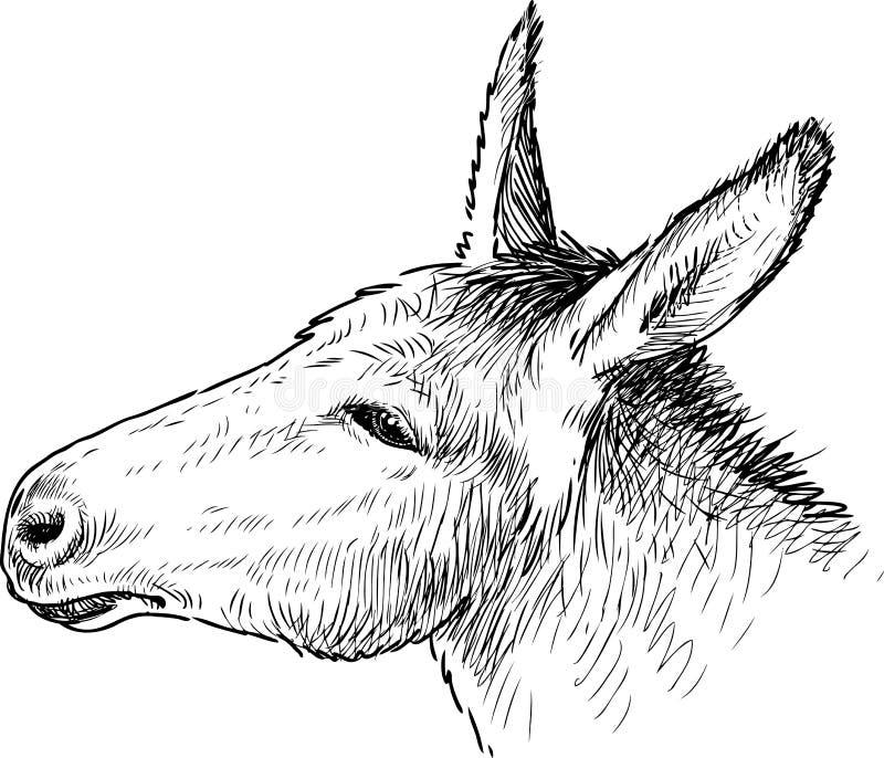 Huvudet av en ledsen åsna vektor illustrationer