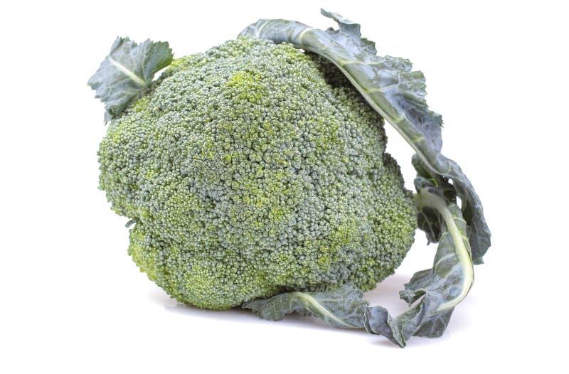 huvudet av ny broccoli på en vit isolerade bakgrund Grönsaker Närbild arkivbild